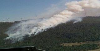 Somada Orman Yangını