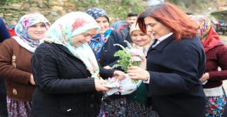 Başkan Çerçioğlu Gözpınarı  Ziyaret Etti