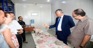 Tatarlı Höyüğünde Tarihi Protokol