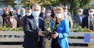 Nitelikli tarımın yeni başkenti, Bursa