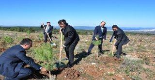 """""""Yeşil Dönüşüm Ormanları Projesi""""Nin İlk Durağı Çanakkale Oldu"""