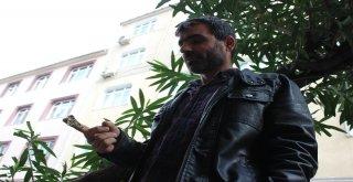 İstanbulda Ender Rastlanan Mekik Kelebeği Bulundu