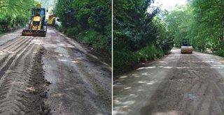 Çınarlıdere Mesire Alanı'na yürüyüş yolu düzenlemesi
