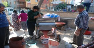 Domates Çekme Makinesi Kadınların İşini Kolaylaştırdı
