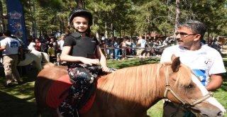 Çocukların Pony Sevinci