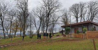 Başkan Gümrükçüoğlu, Trabzon Botanikte İncelemelerde Bulundu.