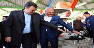 Türkiyenin En Modern Kuş Pazarı Osmangazide