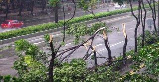 Mangkhut Tayfunu Çine Ulaştı: 2 Ölü