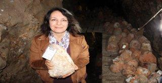 36 Metre Derinlikte Tadına Tat Katan Peynire İlgi Her Geçen Gün Artıyor