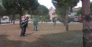 Burhaniye De Parklara Son Sistem Çimlendirme Yapılıyor
