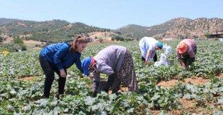 Büyükşehir'den Kiraz'daki kadınlara eğitim