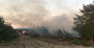İzmirde Makilik Alanda Çıkan Yangın Paniğe Sebep Oldu