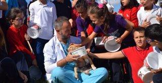 Osmangazi Can Dostlara Şifa Dağıtıyor
