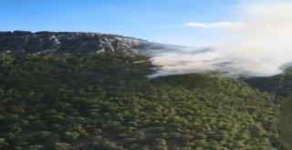 Antalyada Orman Yangını