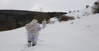Pkk, Karadenizde Kış Üstlenmesi Yapamadı