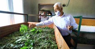 Başkan Gürün İpekböcekçiliği Üreticileri ile Buluştu