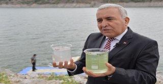 Başkentte İçme Suyunun Kaynağında Temizlik