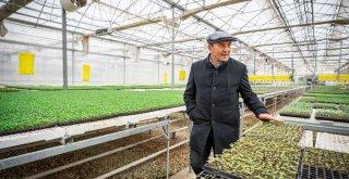 Soyer çifti pazar alışverişini Bayındır üreticisinden yaptı