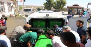 Şanlıurfada Feci Kazada Baba Ve 2 Oğlu Öldü