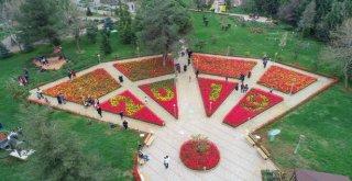 Gaziantep, Rengârenk Çiçeklerle Bezendi