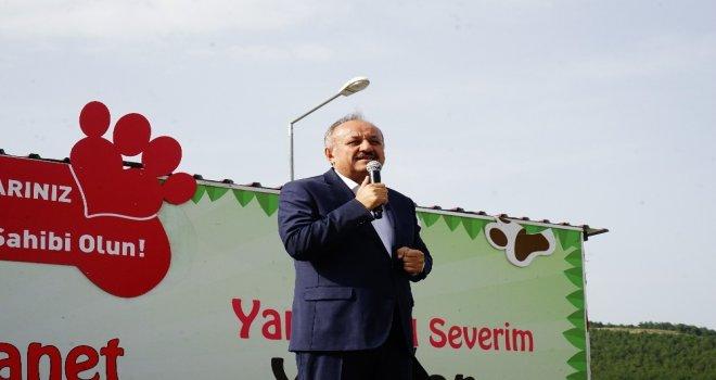 Şarkıcı Elnur Huseynov, Kastamonuda Sokak Hayvanları Yararına Şarkı Söyledi