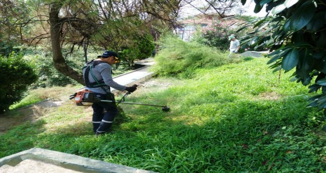 İzmit Belediyesinden Park Ve Yeşil Alanlarda Bakım Çalışması