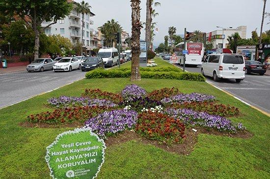 Alanyaya 300 Bin Çiçek