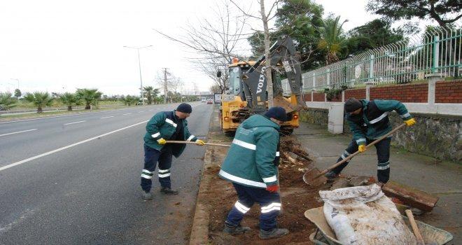 Büyükşehir Belediyesi Ağaçlandırma Çalışmalarını Sürdürüyor