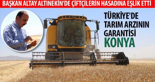 Başkan Altay Altınekin'de Çiftçilerin Hasadına Eşlik Etti