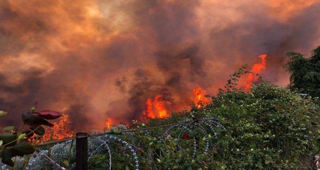 Mudanyadaki Yangının Sigara İzmaritinden Çıktığından Şüpheleniliyor