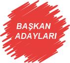 ADAY ADAYLARI